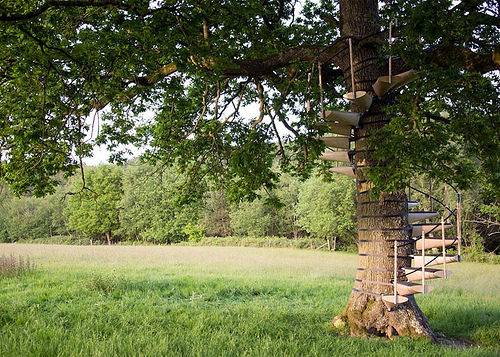 A Novel Idea – A Spiral Staircase Which Attaches to a Tree!